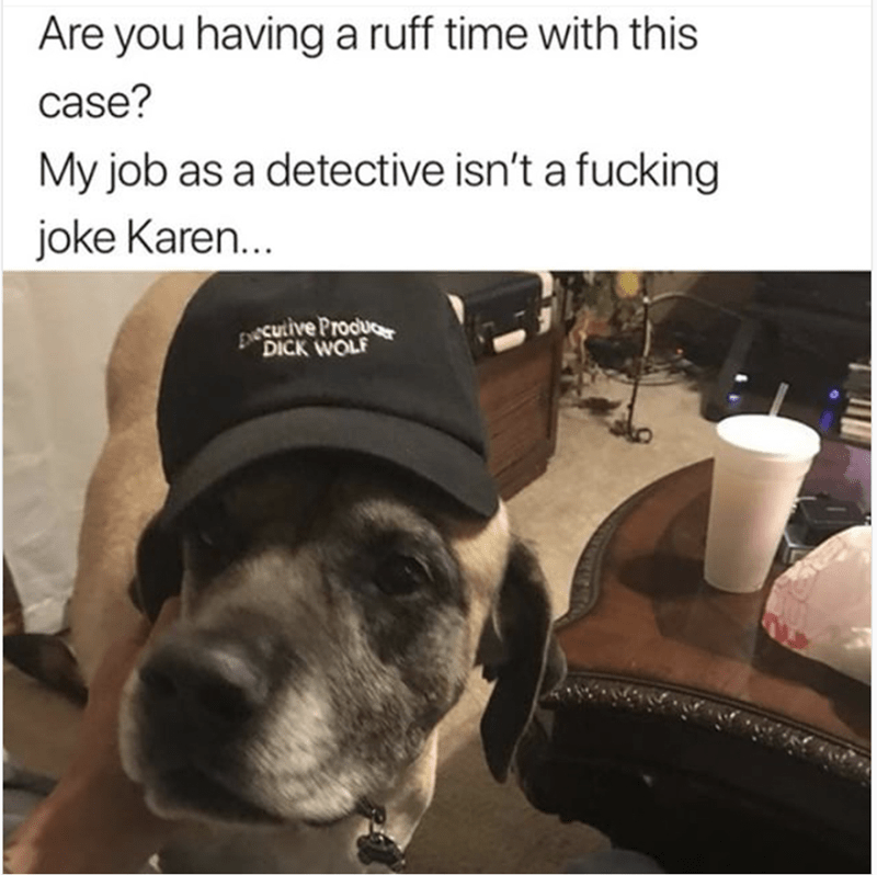 meme - Dog - Are you having a ruff time with this case? My job as a detective isn't a fucking joke Karen... Eecutive Procue DICK WOLF