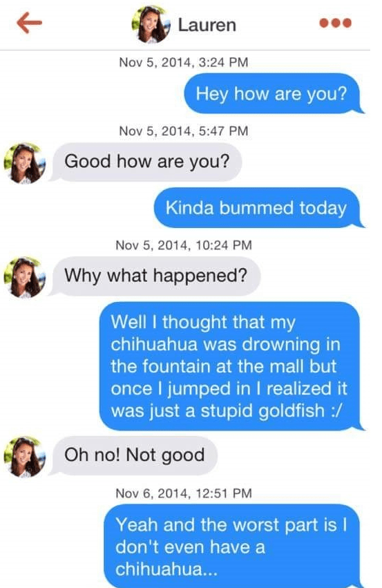 tinder puns - Text - Lauren Nov 5, 2014, 3:24 PM Hey how are you? Nov 5, 2014, 5:47 PM Good how are you? Kinda bummed today Nov 5, 2014, 10:24 PM Why what happened? Well I thought that my chihuahua was drowning in the fountain at the mall but once I jumped inI realized it was just a stupid goldfish :/ Oh no! Not good Nov 6, 2014, 12:51 PM Yeah and the worst part is I don't even have a chihuahua...