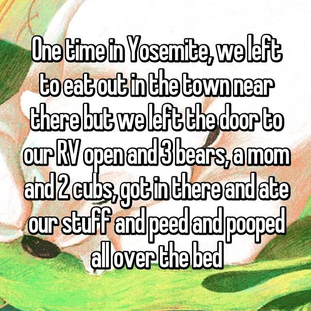 Text - One Eime in Yosemite, weleft to eatout in the town near there but weleft the door to Our RV apen and 3 bears,amom and 2cubs got in there and ate oUr stuff and peedand pooped alloverthe bed