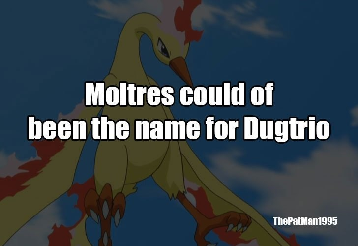 Text - Moltres could of been the name for Dugtrio ThePatMan1995