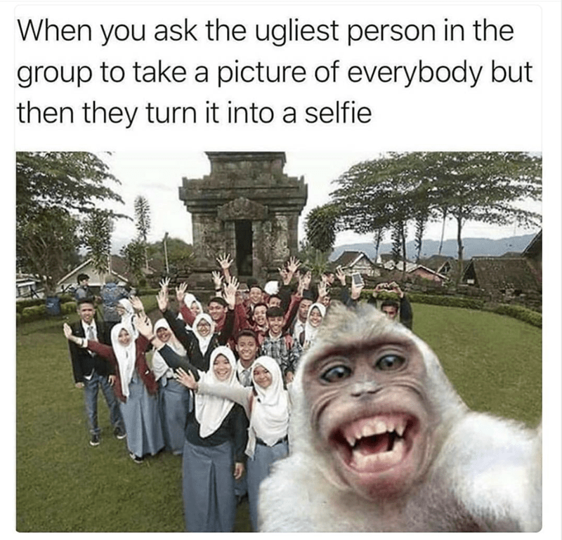 work meme - People - When you ask the ugliest person in the group to take a picture of everybody but then they turn it into a selfie