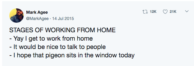 Text - Mark Agee 17 12K 21K @MarkAgee · 14 Jul 2015 STAGES OF WORKING FROM HOME - Yay I get to work from home - It would be nice to talk to people - I hope that pigeon sits in the window today >