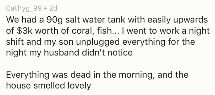 Text - Cathyg_99 2d We had a 90g salt water tank with easily upwards of $3k worth of coral, fish... I went to work a night shift and my son unplugged everything for the night my husband didn't notice Everything was dead in the morning, and the house smelled lovely