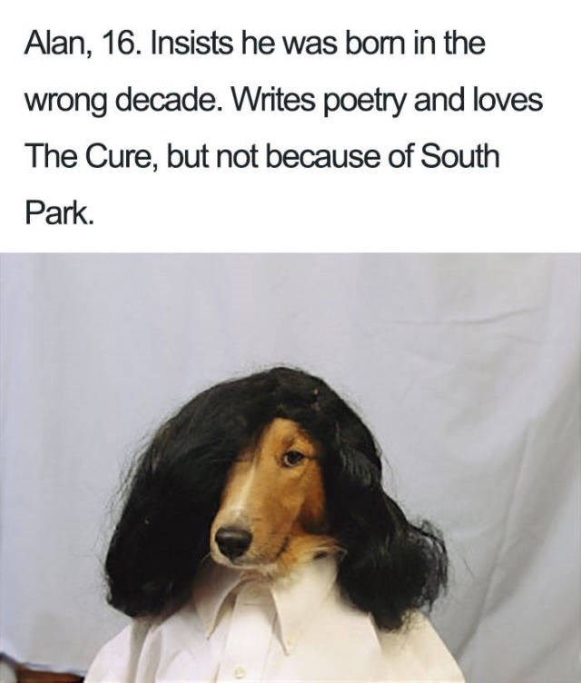 brown dog wearing black emo wig and white shirt - about a 16 year old that thinks he was born in the wrong century