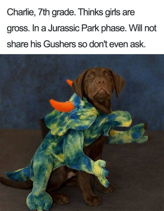 chocolate labrador wearing dinosaur costume Dog Bio Memes - Canidae - Charlie, 7th grade. Thinks girls are gross. In a Jurassic Park phase. Will not share his Gushers so don't even ask.