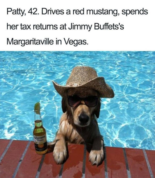 dog resting paws on edge of pool wearing cowboy hat next to beer Dog Bio Memes- Patty, 42. Drives a red mustang, spends her tax returns at Jimmy Buffets's Margaritaville in Vegas. Forom