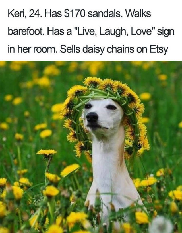 "white greyhound in field of yellow flowers wearing flower wreath on head Dog Bio Memes - Keri, 24. Has $170 sandals. Walks barefoot. Has a ""Live, Laugh, Love"" sign in her room. Sells daisy chains on Etsy"