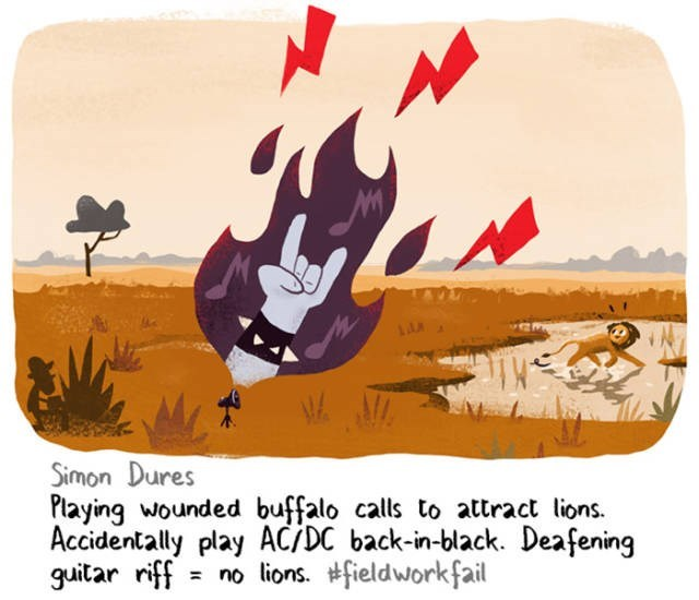 Cartoon - Simon Dures Playing wounded buffalo calls to attract lions. Accidentally play ACĪDC back-in-black. Deafening guitar riff no lions. fieldwork fail
