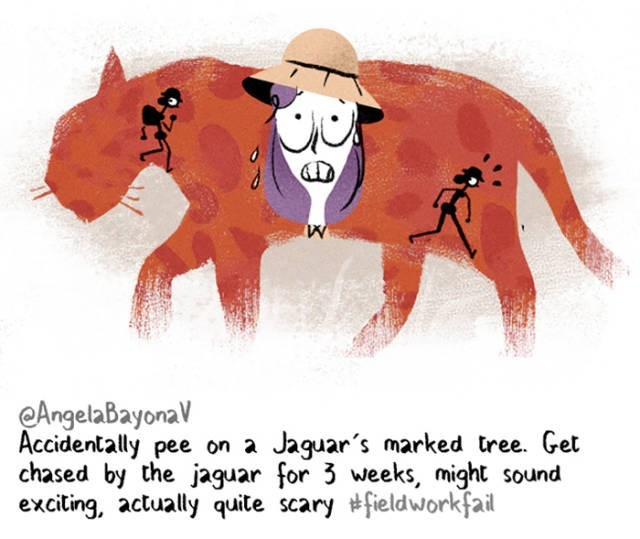 Cartoon - AngelaBayona Accidentally pee on a chased by the jaguar for 3 weeks, might sound exciting, actually quite scary #fieldworkfail Jaguar's marked tree. Get