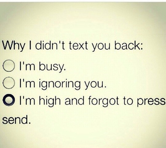 Meme about not texting back because you were hi and forgot to press send.
