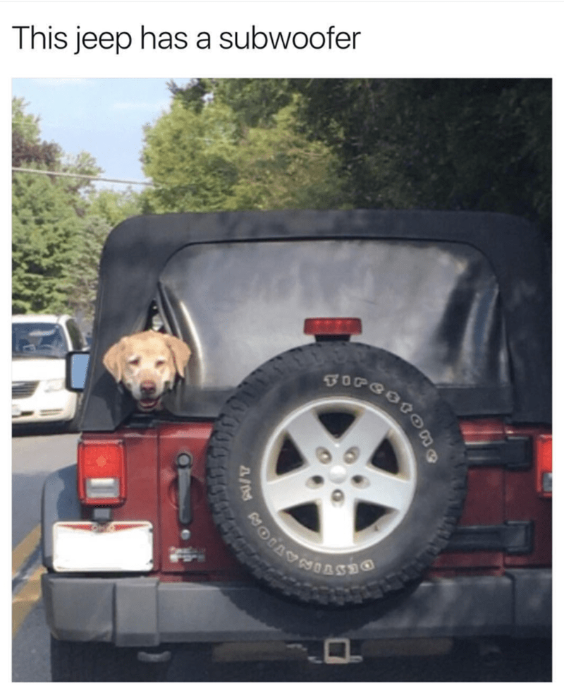 Jeep with dog sticking his head out the back, like a subwoofer.