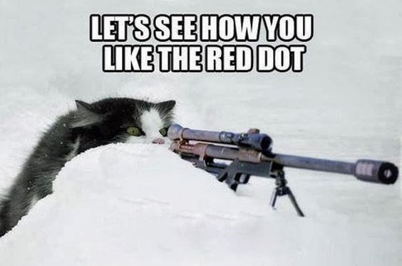 revenge cat - Gun - LETSSEE HOWYOU LIKE THE RED DOT