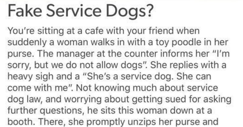 Tumblr post calls out fake service dogs for creating real problems for people with actual disabilities that need them.
