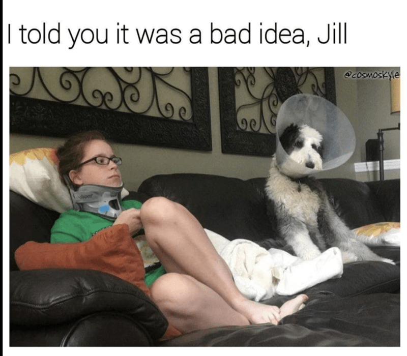 Woman with neck brace and dog with lampshade with joke that they both should have not done it.