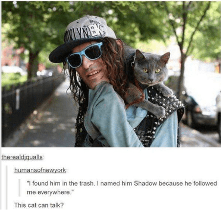 """Cool - ORILYNEK therealdiqualls humansofnewyork """"I found him in the trash. I named him Shadow because he followed me everywhere."""" This cat can talk?"""