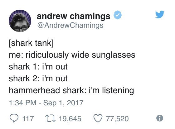 Text - andrew chamings @AndrewChamings [shark tank] me: ridiculously wide sunglasses shark 1: i'm out shark 2: i'm out hammerhead shark: i'm listening 1:34 PM Sep 1, 2017 t 19,645 117 77,520