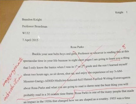 Possibly the Greatest Essay Intro of All Time