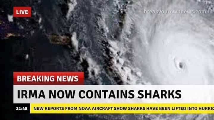 Funny meme about Hurricane Irma containing sharks