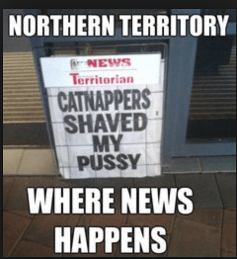 funny headline - Font - NORTHERN TERRITORY NEWS Territorian CATNAPPERS SHAVED MY PUSSY WHERE NEWS HAPPENS