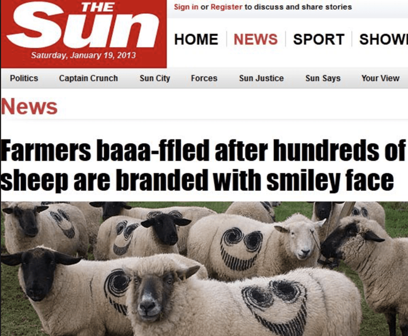 funny headline - Vertebrate - THE Sign in or Register to discuss and share stories HOME NEWS SPORT SHOWI Saturday, January 19, 2013 Politics Captain Crunch Sun City Forces Sun Says Sun Justice Your View News Farmers baaa-ffled after hundreds sheep are branded with smiley face