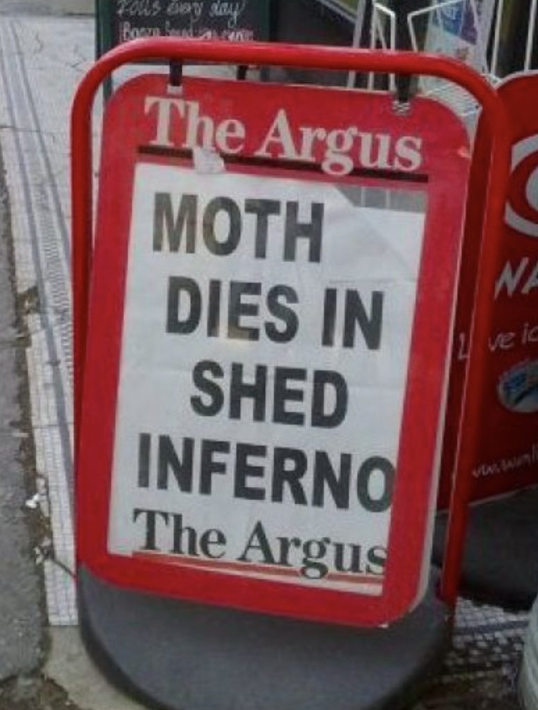 funny headline - Signage - Eolus Evey any BooD The Argus MOTH DIES IN SHED INFERNO The Argus NA ve i