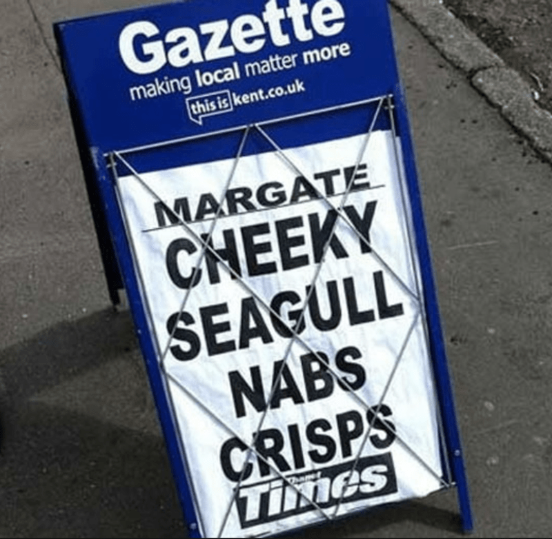 funny headline - Banner - Gazet making local matter more this is kent.co.uk MARGATE CHEEKY SEAGULL NABS CRISPS Times hame