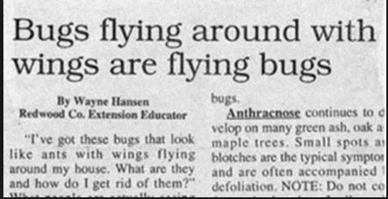 """funny headline - Text - 