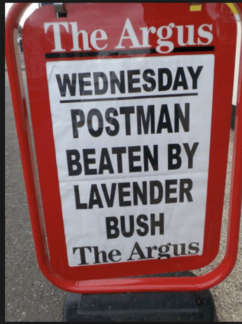 funny headline - Sign - The Argus WEDNESDAY POSTMAN BEATEN BY LAVENDER BUSH The Argus