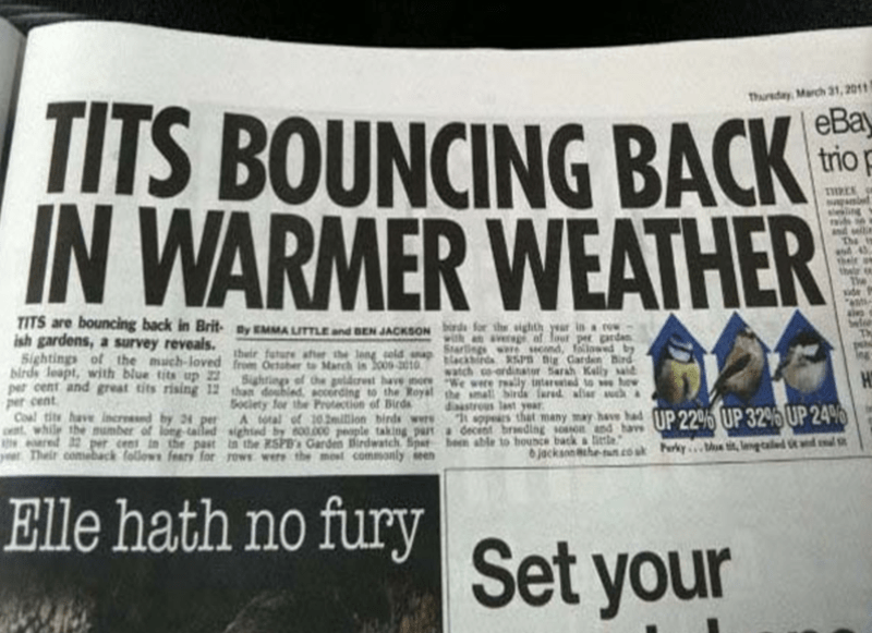 """funny headline - Newspaper - Thursday March 31,2011 TITS BOUNCING BACK IN WARMER WEATHER eBa trio THREK aling and sellin The is their n their The side """"anti- aies Sel TITS are bouncing back in Brit MUTTLEd BE JACKSON d for the sighth yeur in ac ish gardens,a survey reveals. Sarng ere Hnd folowed by birds leapt, with blue tits up h October o March in 3009-3010 per cent and great tits rising 12 than doubled accerding to the Royal the small birds red alr uch watcho-ordinaor Sarh Kelly aid Sightings"""