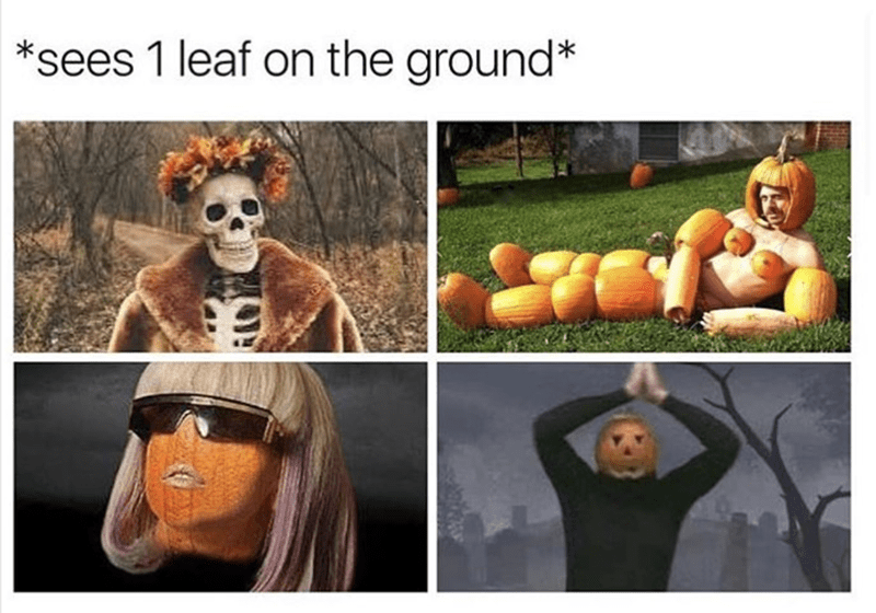 Funny meme of seeing 1 leaf on the ground and totally getting into the mood for halloween