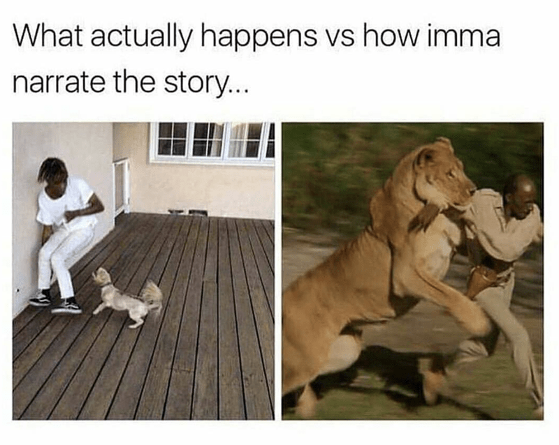 Funny meme comparing how the story happened VS how you'll tell it - tiny dog attacking woman and lion attacking man.