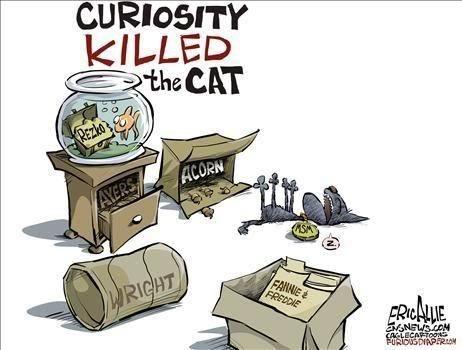 Cartoon - CURIOSITY KILLED the CAT REZKO'3 ACORN AYERS FANNE FREDDIE WRIGHT EONSOM CAGLECATOO FURDUSDIAPERON