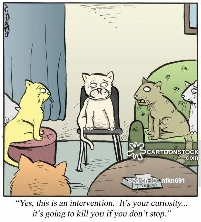 """Cartoon - SCARTOONSTOCK com Search D nfkn691 TISSUES """"Yes, this is an intervention. It's your curiosity.. it's going to kill you if you don't stop."""""""