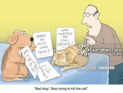 """Cartoon - WHo INVENTED THE CAN- OPENER 2 HERE MICE COME FROM? WHY SCARTOONSTOCK THE SKY Search ID: nki0240 """"Bad dog! Stop trying to kill the cat!"""" CURIOUS YET"""