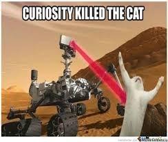 The curiosity cat killed