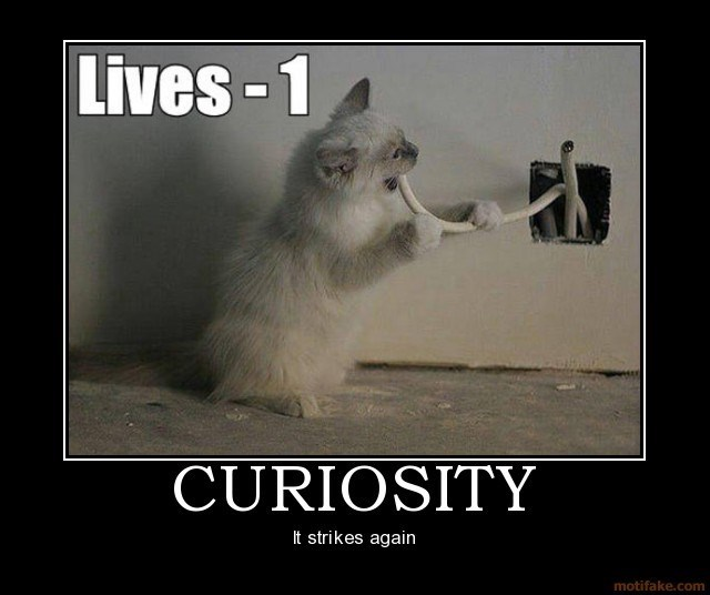 Photo caption - Lives 1 CURIOSITY It strikes again motifake.com