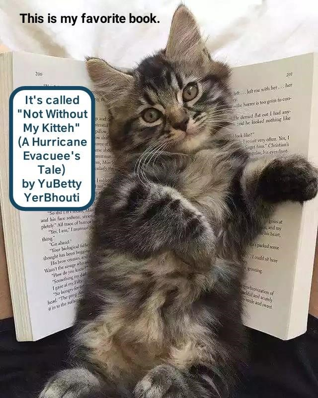 """cat meme - Cat - This is my favorite book. 200 201 It's called left.kft me with her. her """"Not Without II mth horror is too grin to con p.and stobtal pilow He denied Aat out I had anv- d he looked nothing like My Kitteh"""" (A Hurricane urce of me ok ike? Treit very often. Yes, I get hiChristian's his evesfost Evacuee's m, Mis Tale) by YuBetty YerBhouti colarly the 1 tobbed """"So diarassuliss and his face softens, serious pietel All trace of hunorhi """"Yes, lain, Iunnur thing Co alead Your biological fa"""