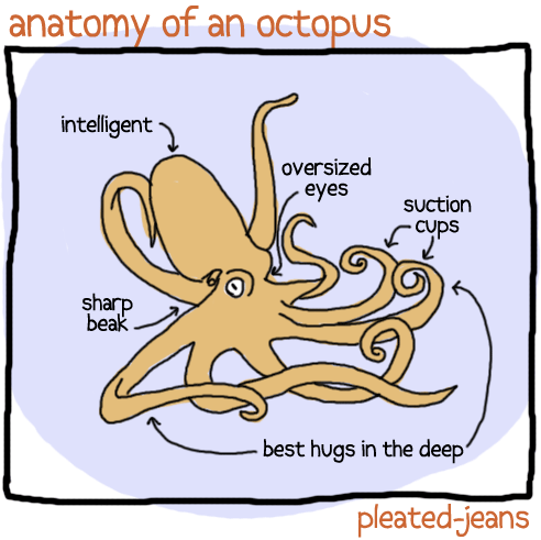 Organism - anatomy of an octopus intelligent oversized eyes suction Cyps sharp beak best hugs in the deep pleated-jeans