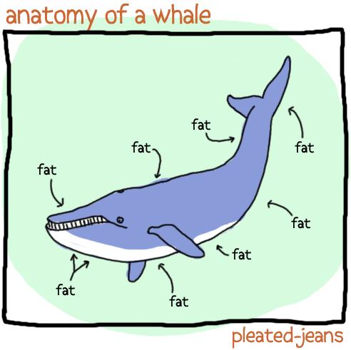 Fish - anatomy of a whale fat fat fat fat fat fat fat fat pleated-jeans