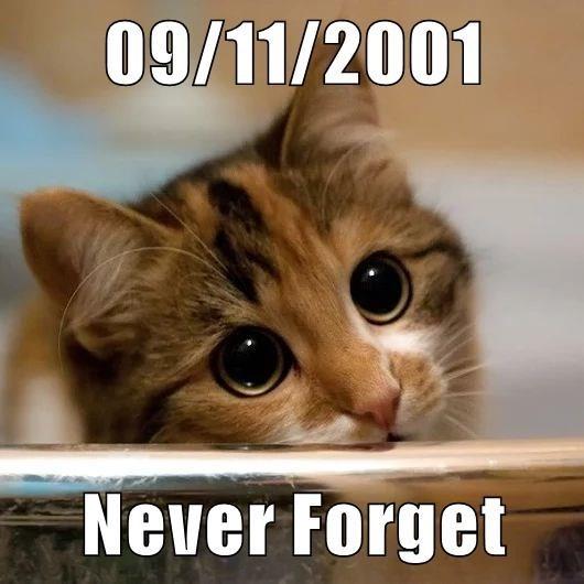 a meme honoring 9/11