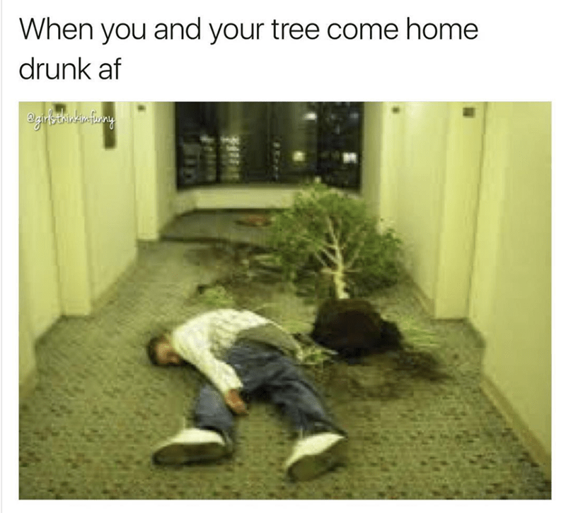 Text - When you and your tree come home drunk af 3igifsthn'u fiony