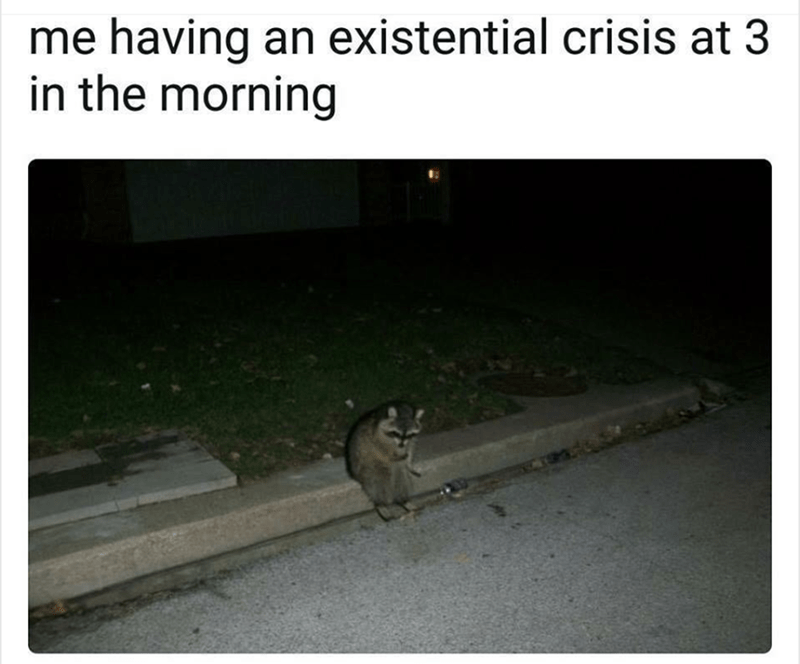 Text - me having an existential crisis at 3 in the morning