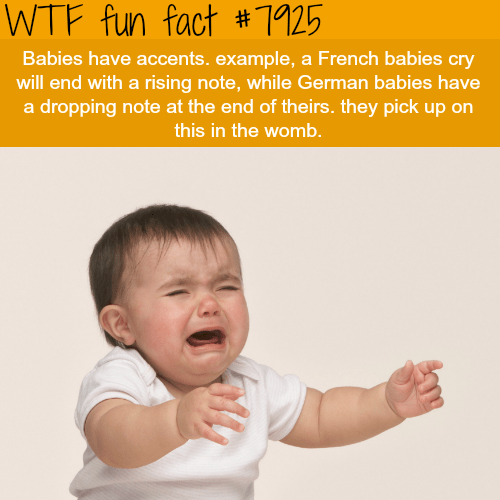 Child - WTF fun fact #1125 Babies have accents. example, a French babies cry will end with a rising note, while German babies have a dropping note at the end of theirs. they pick up on this in the womb.