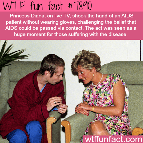 Fun - WTF fun fact #7810 Princess Diana, on live TV, shook the hand of an AIDS patient without wearing gloves, challenging the belief that AIDS could be passed via contact. The act was seen as a huge moment for those suffering with the disease. wtffunfact.com