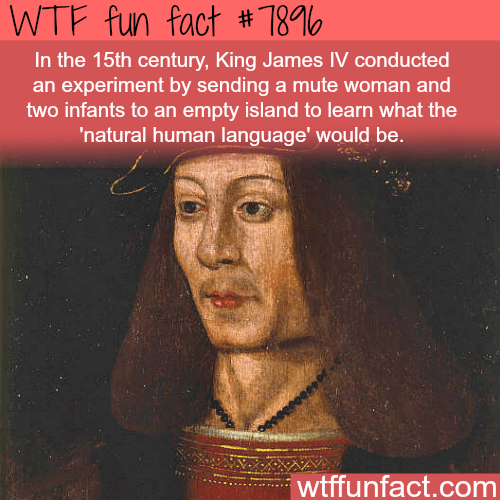 Text - WTF fun fact # 780 In the 15th century, King James IV conducted an experiment by sending a me woman and two infants to an empty island to learn what the 'natural human language' would be. wtffunfact.com