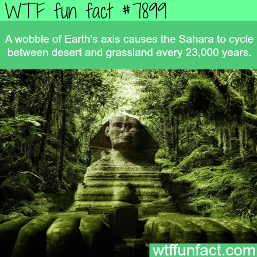 Nature - WTF fun fact # 7891 A wobble of Earth's axis causes the Sahara to cycle between desert and grassland every 23,000 years. wtffunfact.com NSA