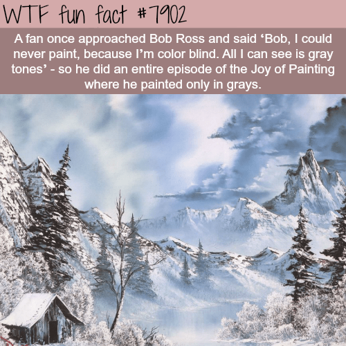 Winter - WTF fun fact #1102 A fan once approached Bob Ross and said 'Bob, I could never paint, because I'm color blind. All I can see is gray tones'-so he did an entire episode of the Joy of Painting where he painted only in grays.
