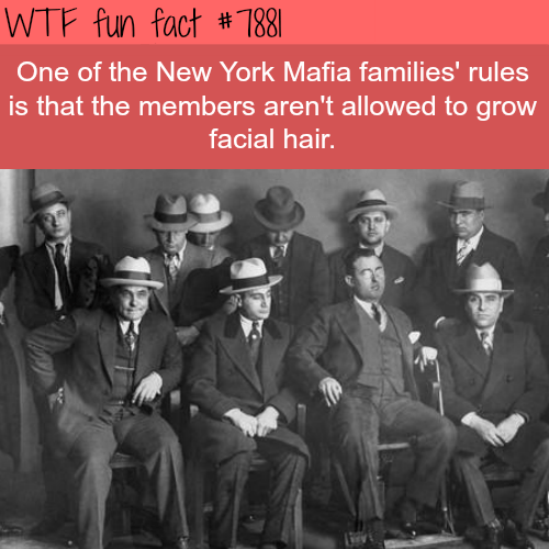 Team - WTF fun fact # 7881 One of the New York Mafia families' rules is that the members aren't allowed to grow facial hair.