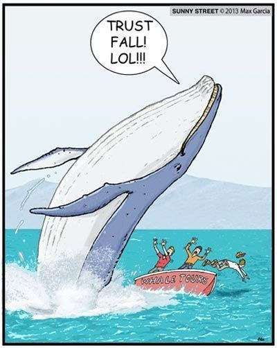 funny webcomic of a humpback whale doing a trust fall on a bunch of whale watchers