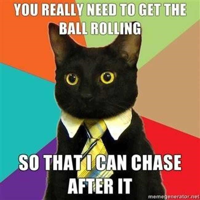 business cat - Cat - YOU REALLY NEED TO GET THE BALL ROLLING SO THATICAN CHASE AFTER IT memegenerator.net